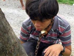 Oğlunu ağaca zincirledi
