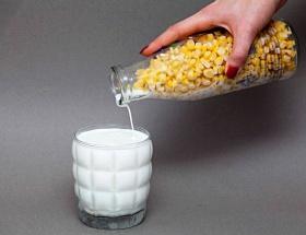 GDOlu mısıra ret