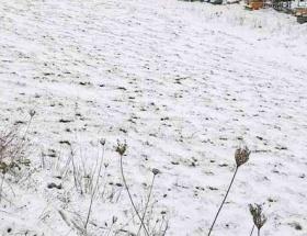 Almanyada kar yağışı