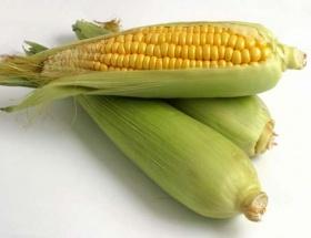 Mısır stokları azalıyor, pirinç artıyor