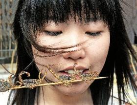 Geleceğin yiyeceği böcek