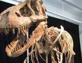 ABD çalıntı dinozoru teslim edecek