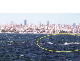 İşte İstanbulun kayıp adası