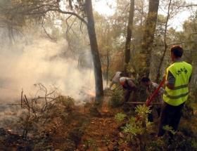 Keşanda orman yangını