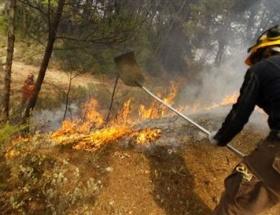 Kanarya Adaları yanıyor