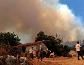Serikte orman yangını