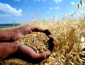 TKDK, çiftçilere ilk kez sulamada desteği verecek