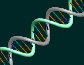 DNAnın karanlık yüzü umut olacak