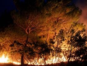 Kazdağları alev alev yanıyor