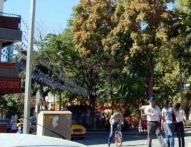 Kırşehir sokaklarında Neşet Ertaş türküleri