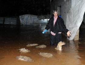 Türk Kızılayıdan Mersine yardım