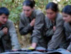 Silopide 4 PKKlı teslim oldu