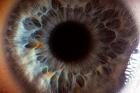 Gözün inanılmaz detaylı fotoğrafları