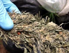 Otogarda uyuşturucu tacirlerine darbe