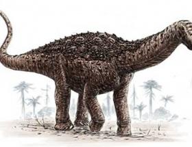 7,5 santimetrelik dinozor dişi