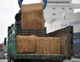 Bulgaristandan saman ithal ettiler