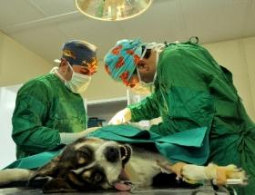 Ameliyatını beklerken kalp krizi geçirdi