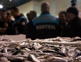 8 ton balığa el konuldu