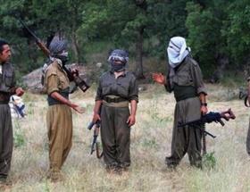Kandildeki PKKlı: Bu hayatı terk edemem
