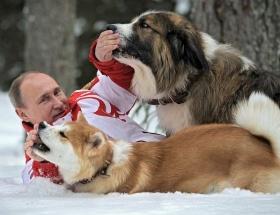 Putin sosyal medyayı salladı