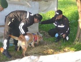 Narkotik köpeği kaçakçılığa izin vermedi