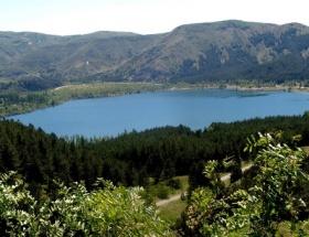 Bakanlık, 400 baraja orman kuracak