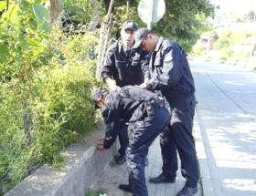 Polisten süpürgeli bonzai operasyonu