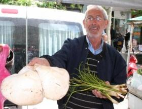 Mantar, Buğday Meydanında etten pahalı