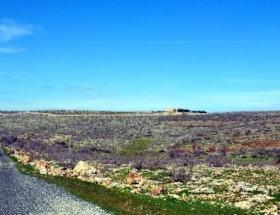 Mor Gabriel Manastırının yolu genişletilecek